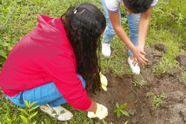 O grupo realiza atividades de conscientização com agricultores
