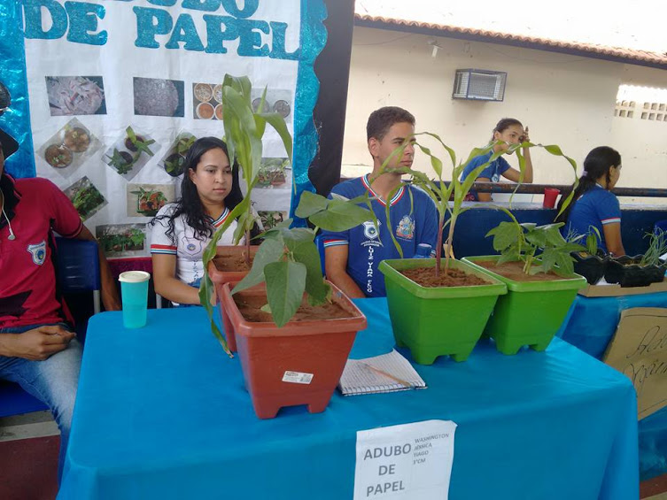 Os alunos moram na zona rural da cidade e suas famílias sobrevivem da agricultura