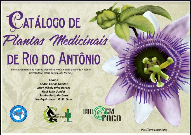 """Projeto """"Utilização de plantas medicinais no município"""" / Divulgação"""