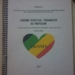 Caderno-didático-elaborado-a-partir-de-projeto-de-alunos