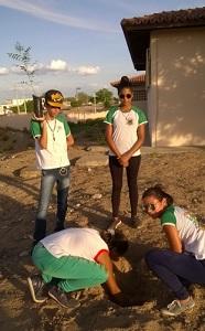 quatro_jovens_realizando_plantio_ao_por_do_sol