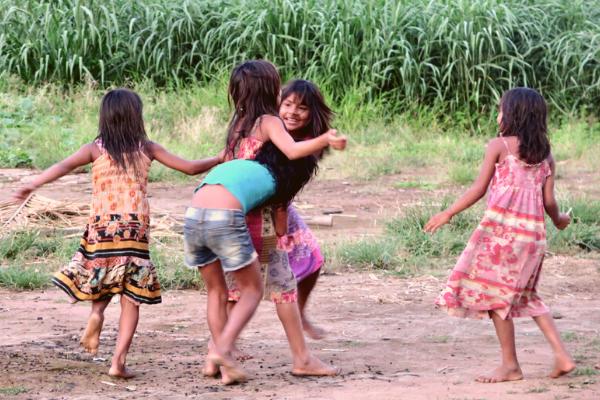 Estudantes que preservam florestas tropicais podem receber prêmio global